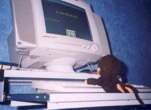 joue sur ordinateur